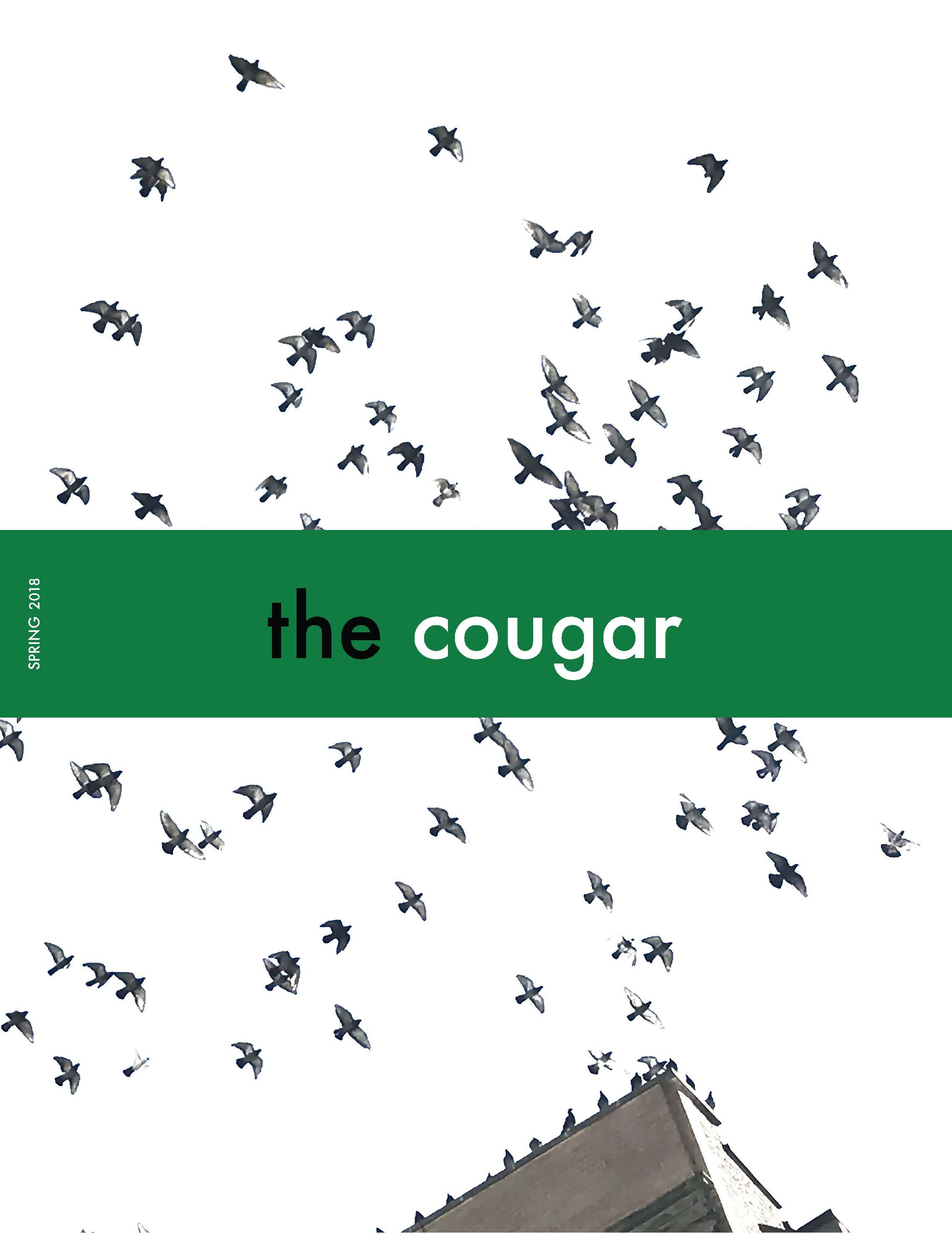 The Cougar Magazine, Ed. 4, Cover Art